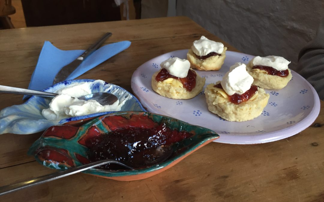 Spring Sunshine  Scones